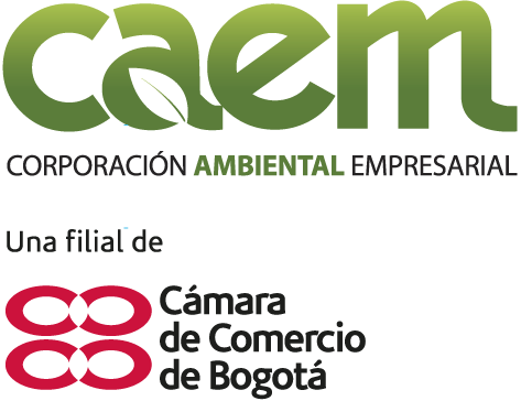 caem-ccb-cv-2019