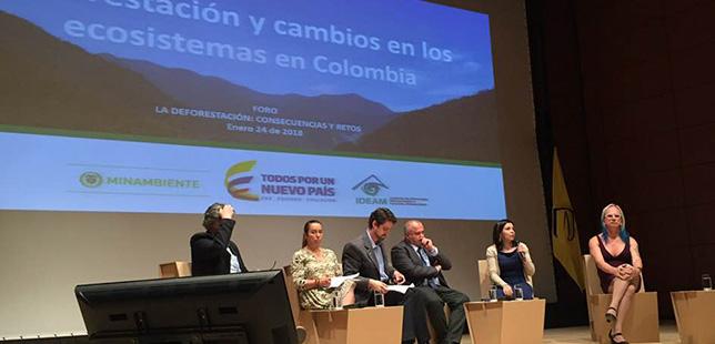 cambios-en-el-ecosistema-de-colombia-carrera-verde-natura