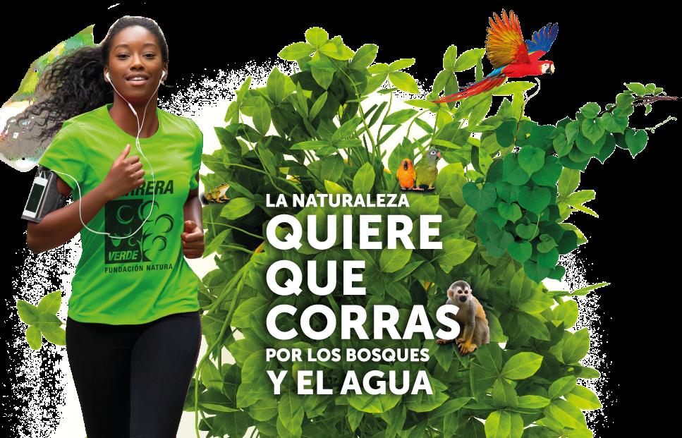 carrera-verde-bogota-2019-colombia
