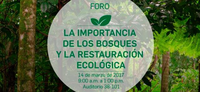 foro-importancia-de-los-bosques-medellin-colombia-fundacion-natura-carrera-verde