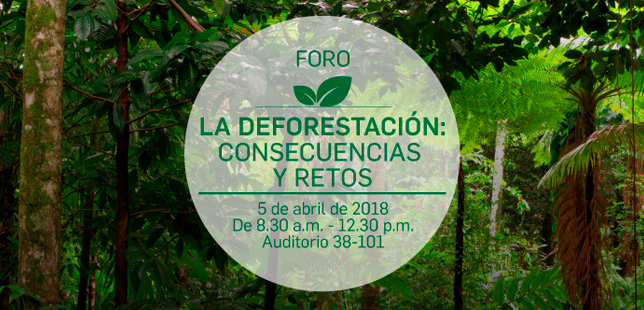 foro-la-deforestacion-consecuencias-y-retos-carrera-verde-colombia