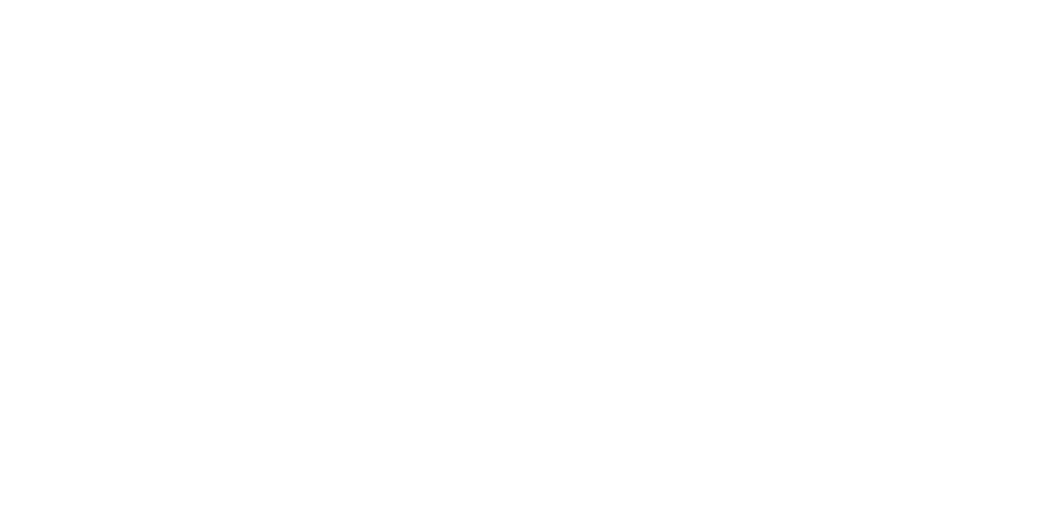 logo-triana-value-marketing2