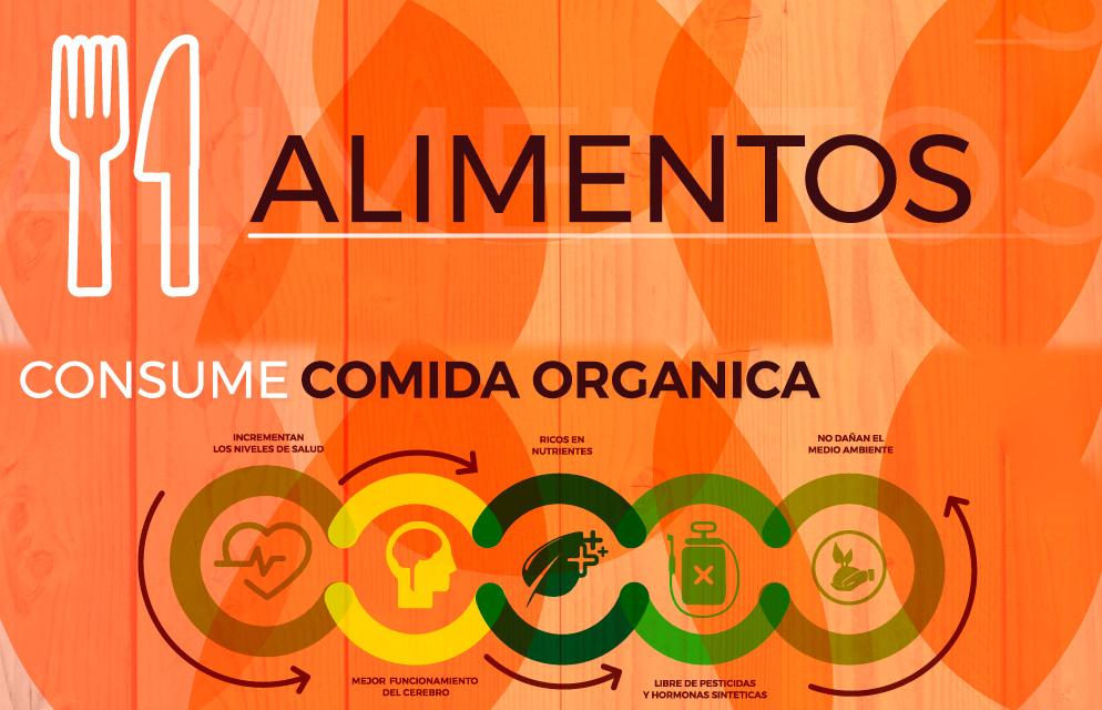 manejo-de-alimentos-carrera-verde-colombia