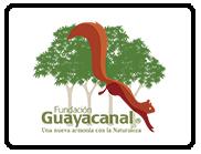 patrocinadores-carrera-verde-2017-8-guayacanal