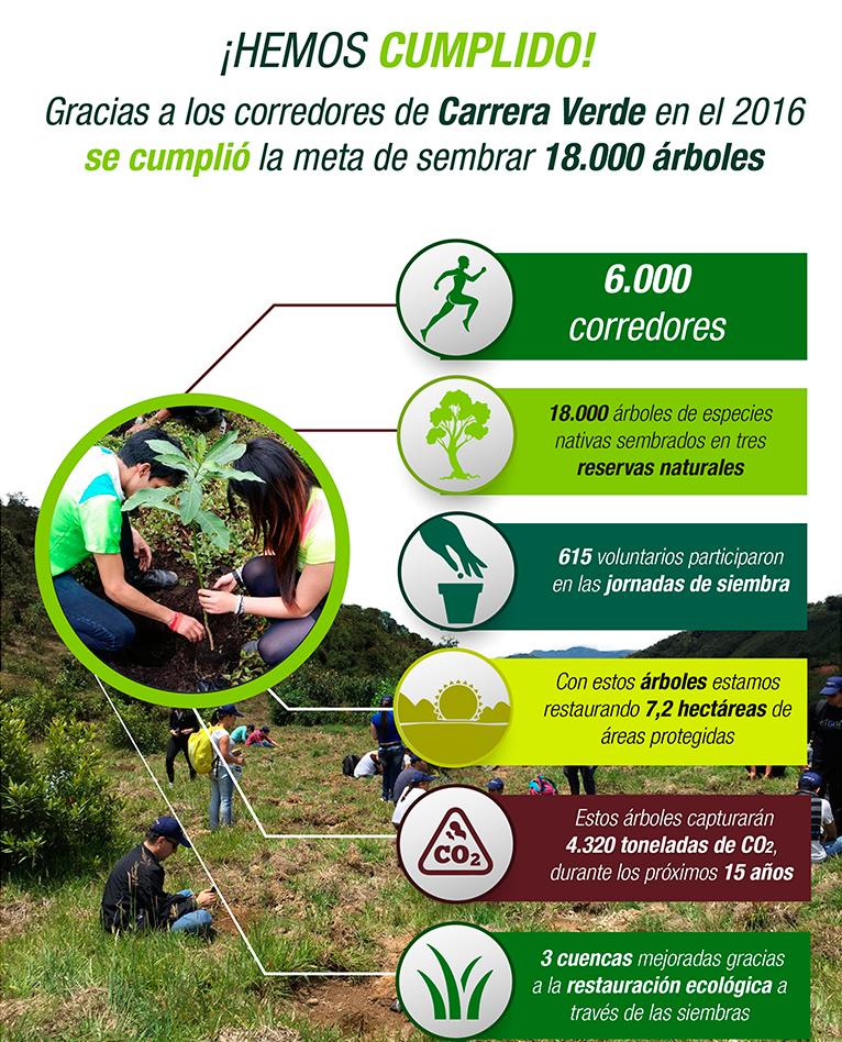 plantacion-arboles-carrera-verde