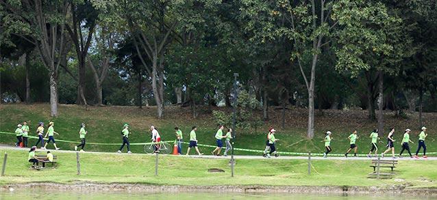 se-sembraran-3-arboles-por-corredor-carrera-verde