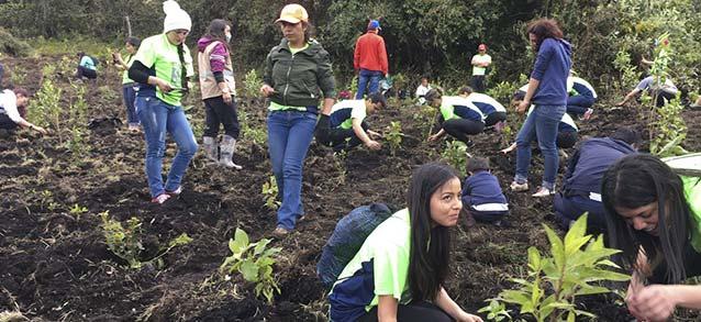 siembra-2017-carrera-verde-colombia