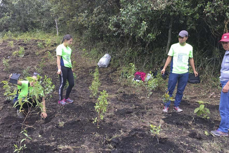 siembra-arboles-2017-carrera-verde-4